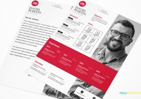 Creative Business Resume Template in MS Word, PSD & InDesign Formats