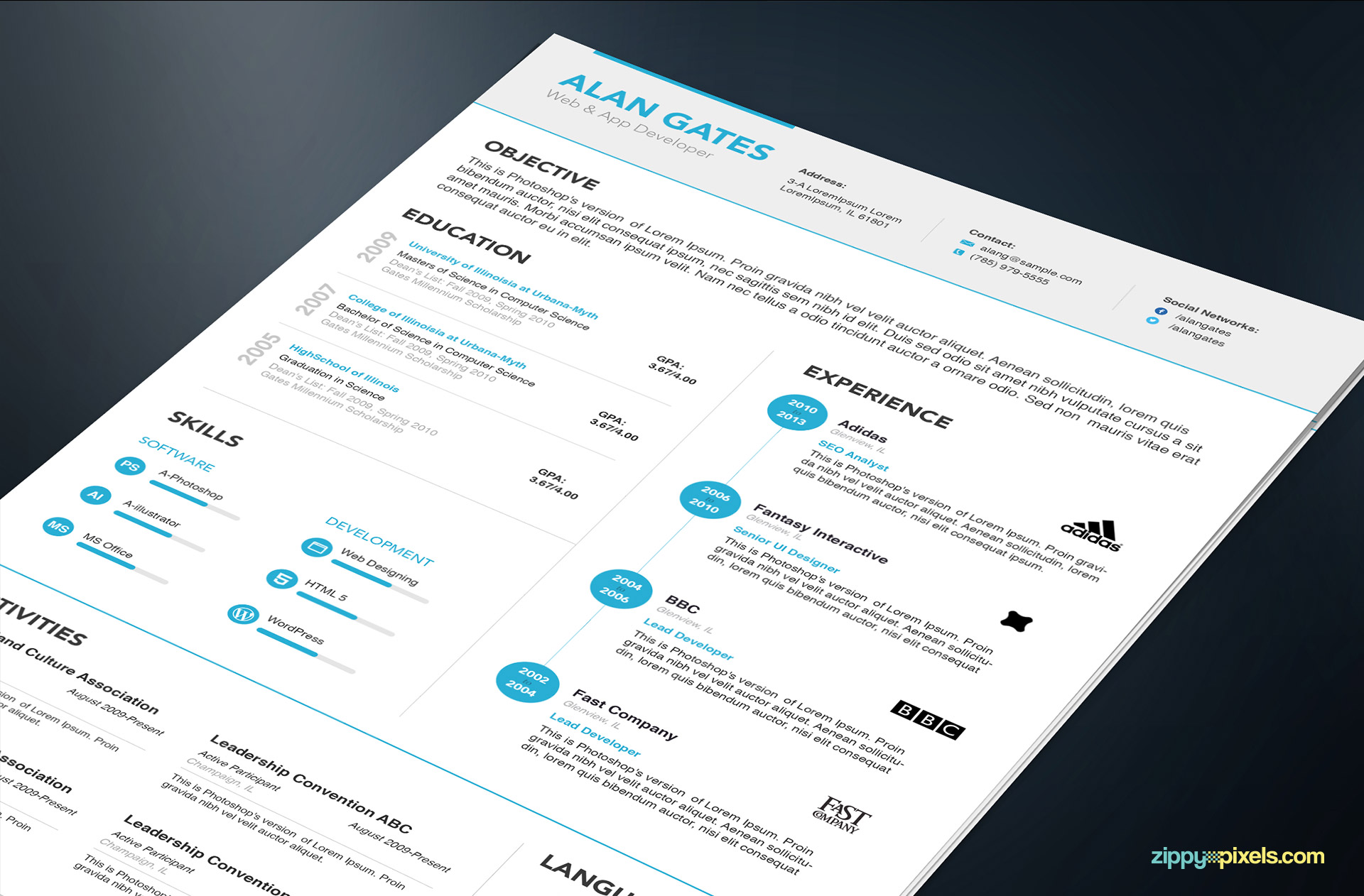 Professional Resume Templates in Simple Style