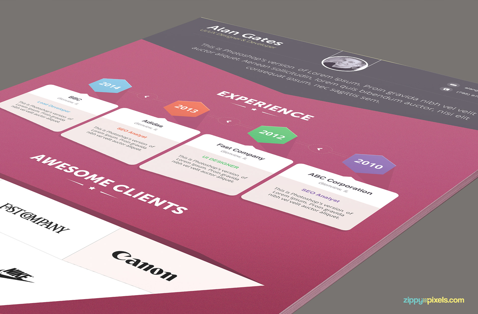 Infographics Resume Template for Designers 1