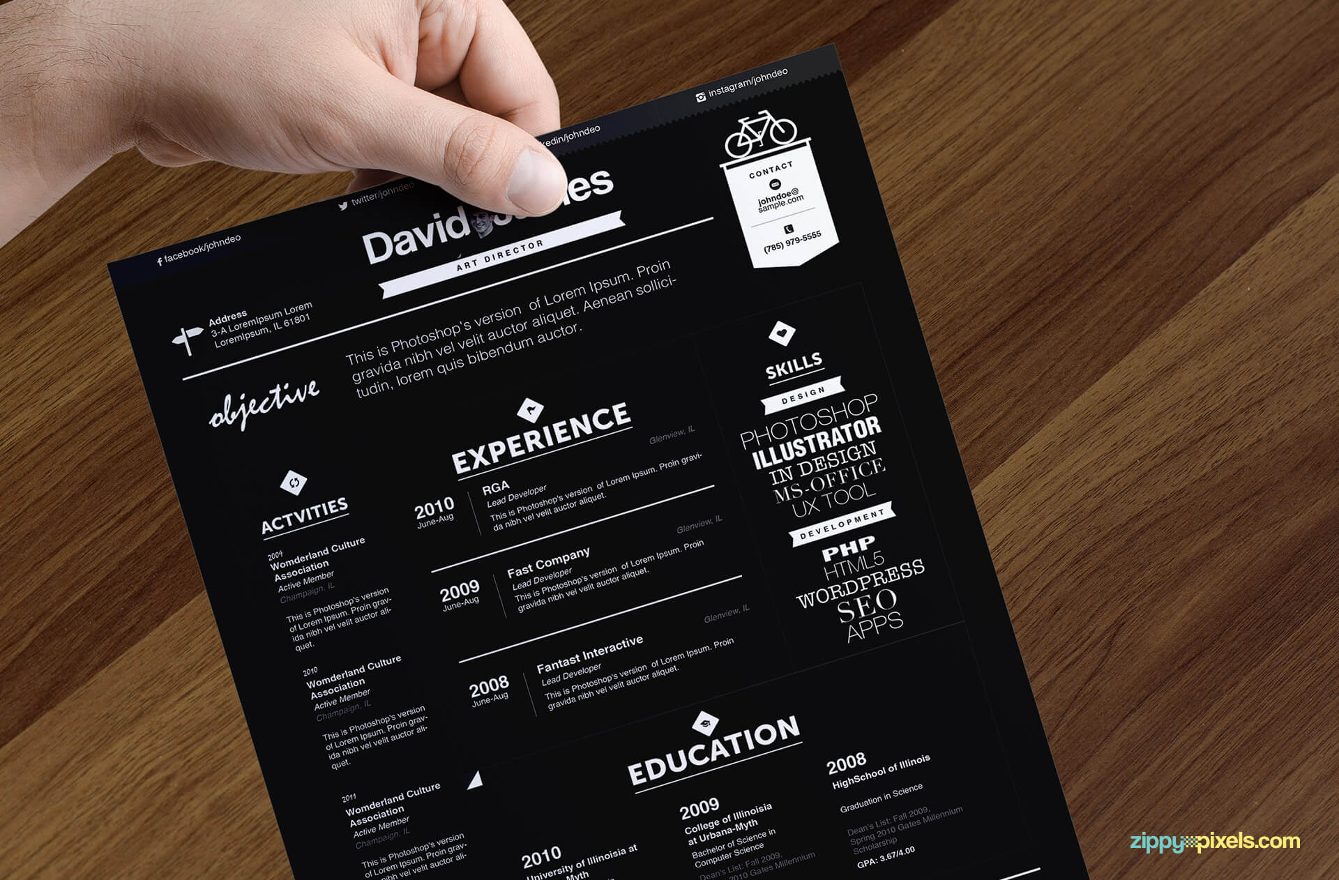15 resume templates bundle zippypixels