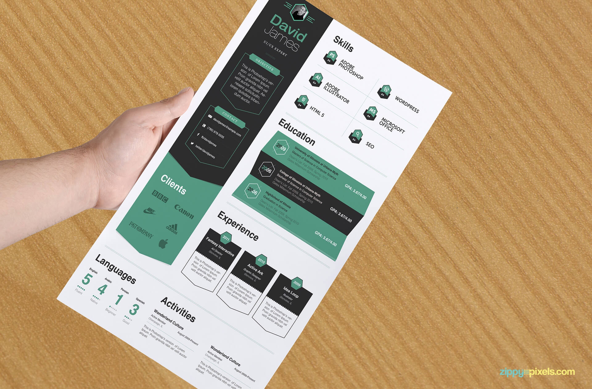 Professional Business Resume Template with White, Green and Black Colors