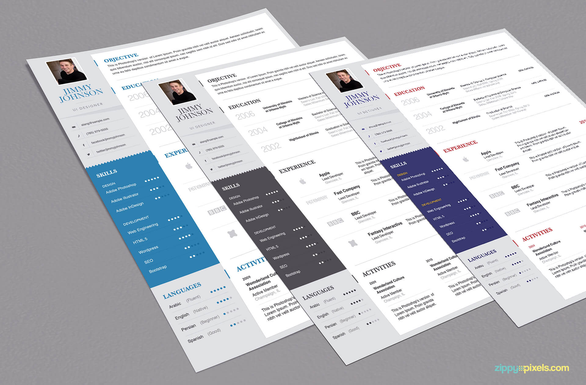 3 Simplistic Resume Templates for Professionals