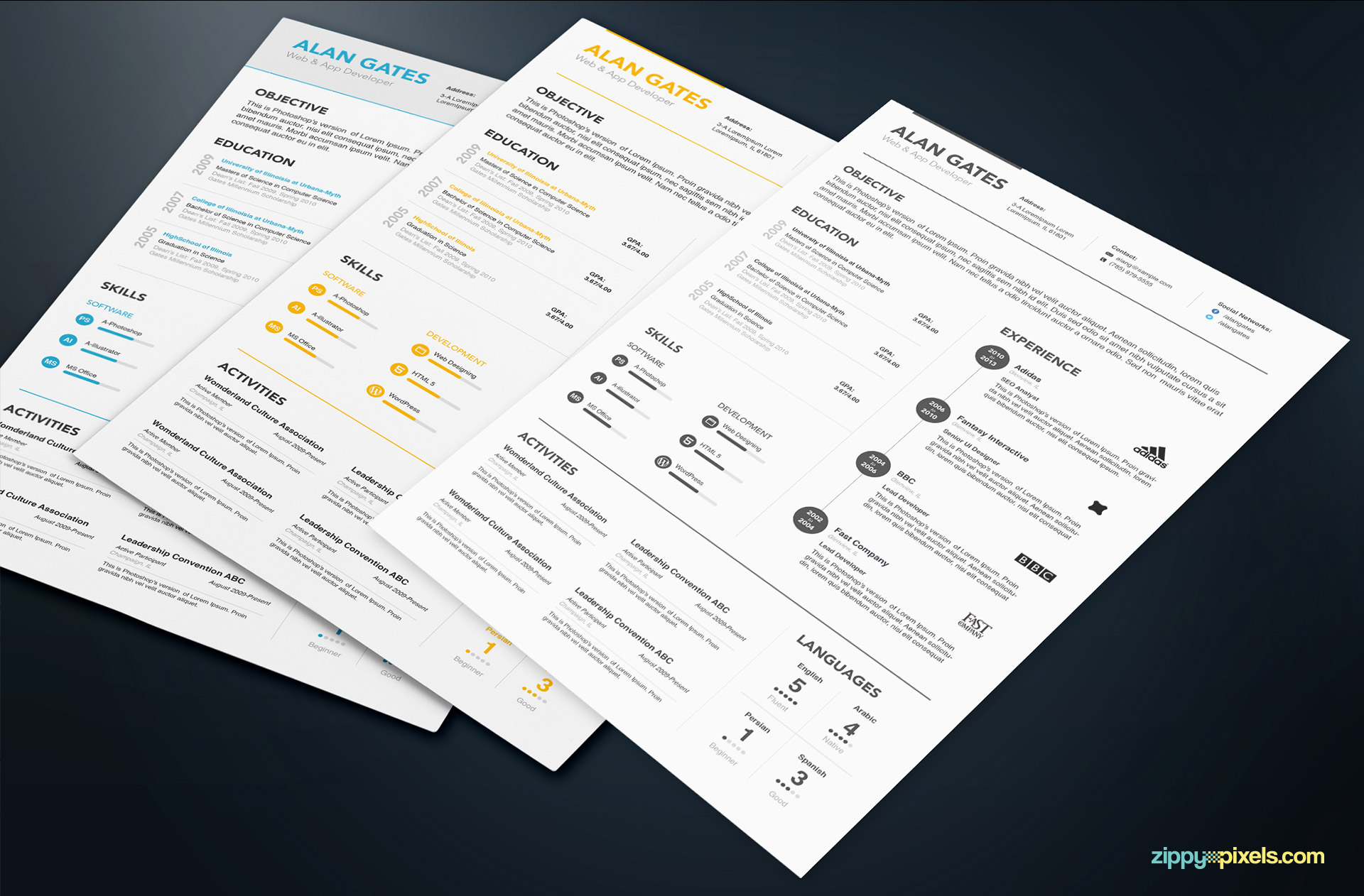 3 Professional Resume Templates in Simple Style