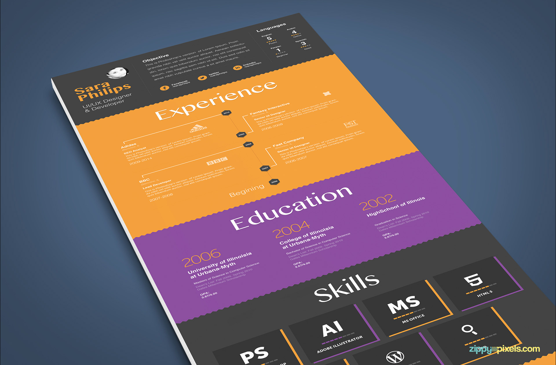 Minimalistic Resume Template in Multi Colors
