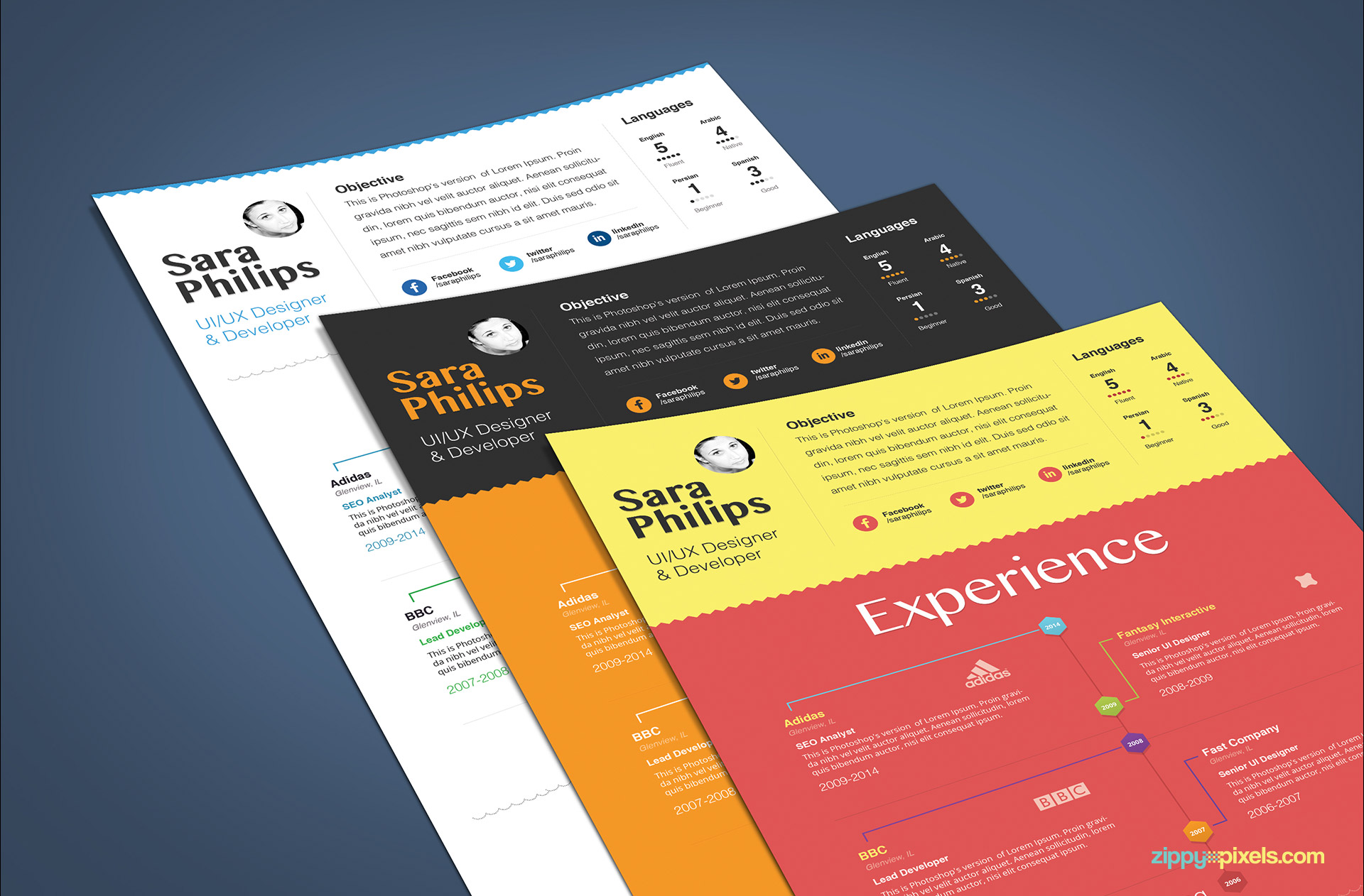 Minimalistic Resume Template Set of 3 Color versions