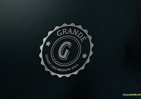 Photorealistic Fabric PSD Logo Mockups Volume 2