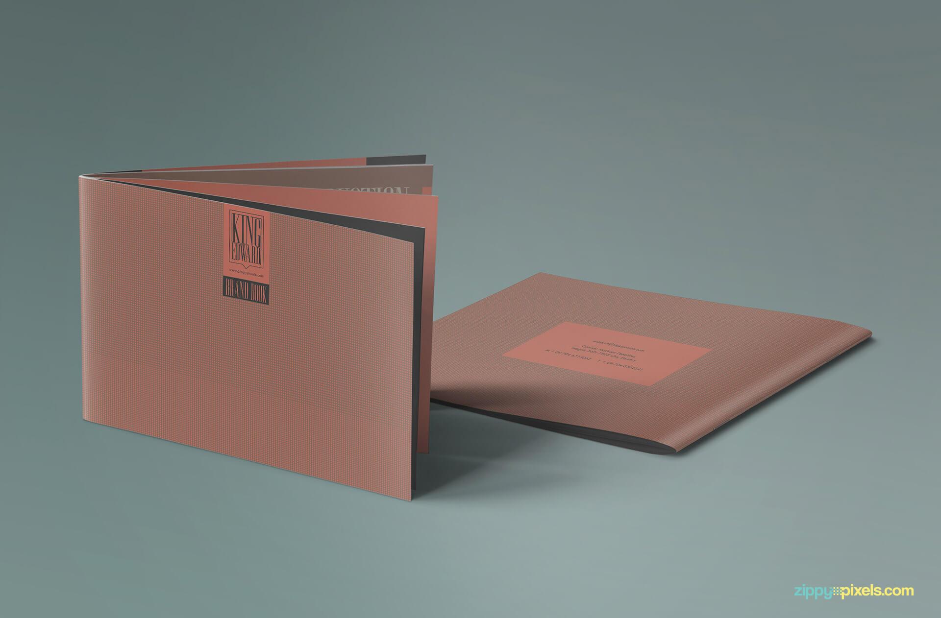 Presentation of Brand Book - Brand Guidlines Template