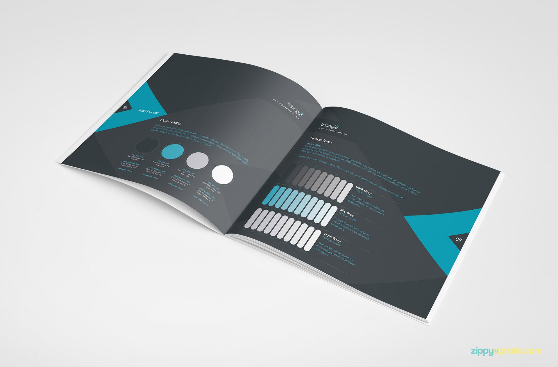 07-brand-book-11-brand-color