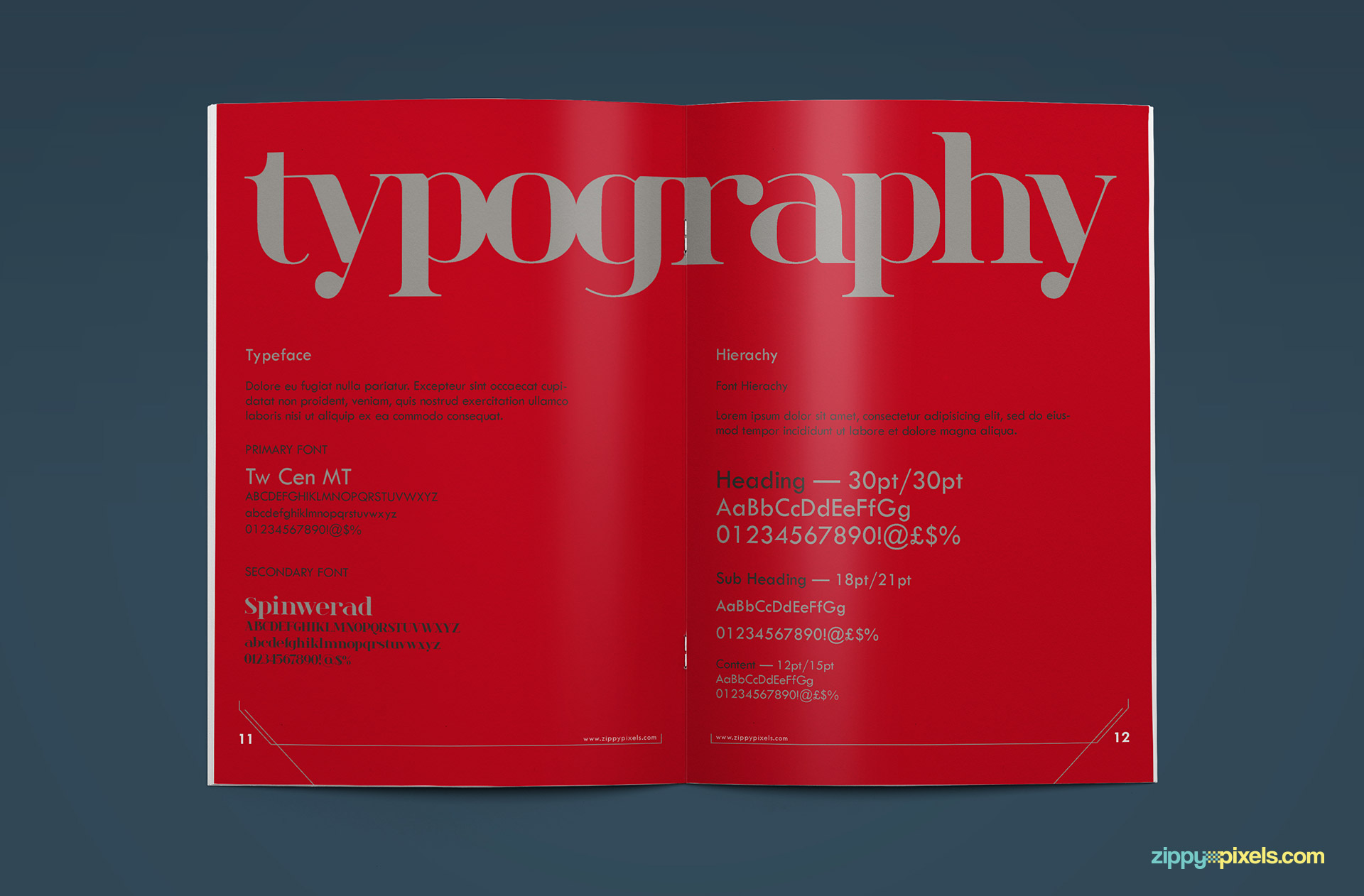 09-brand-book-10-typography