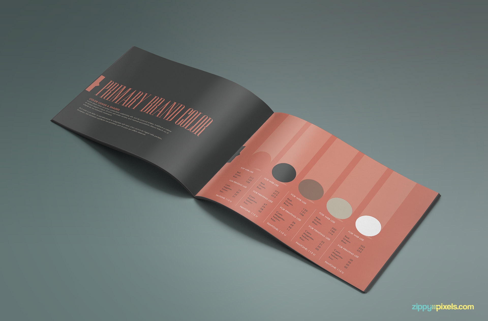 Brand Book - Brand Guidlines Template-Brand Colors
