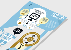 Beautiful Infographics Template with Creative Design – 3 Color Options