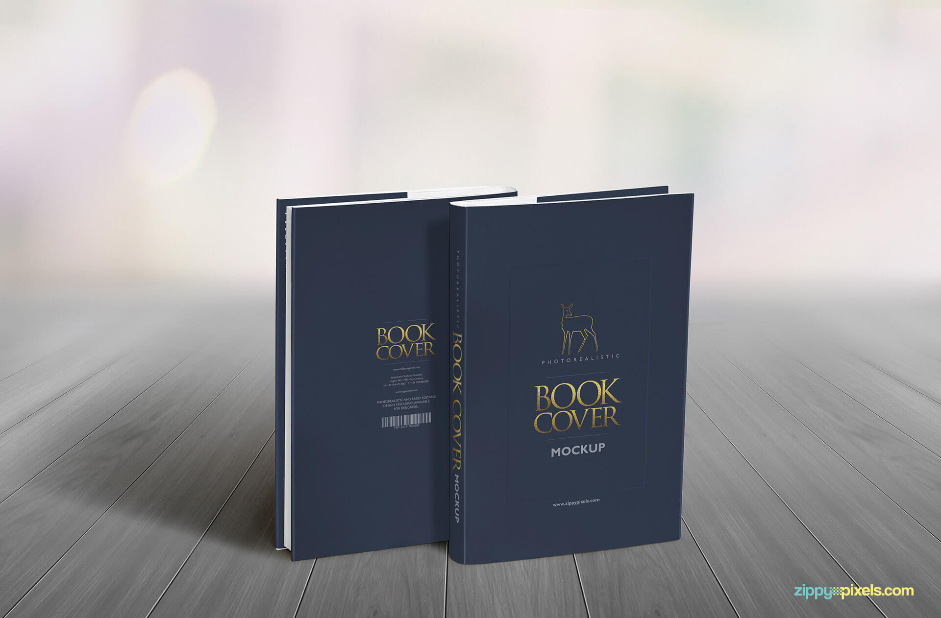 Hardcover book mocksup showing two book standing to show fron and back of dustcover