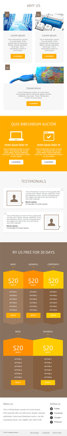 hosting second half mail chimp-supported newsletter template