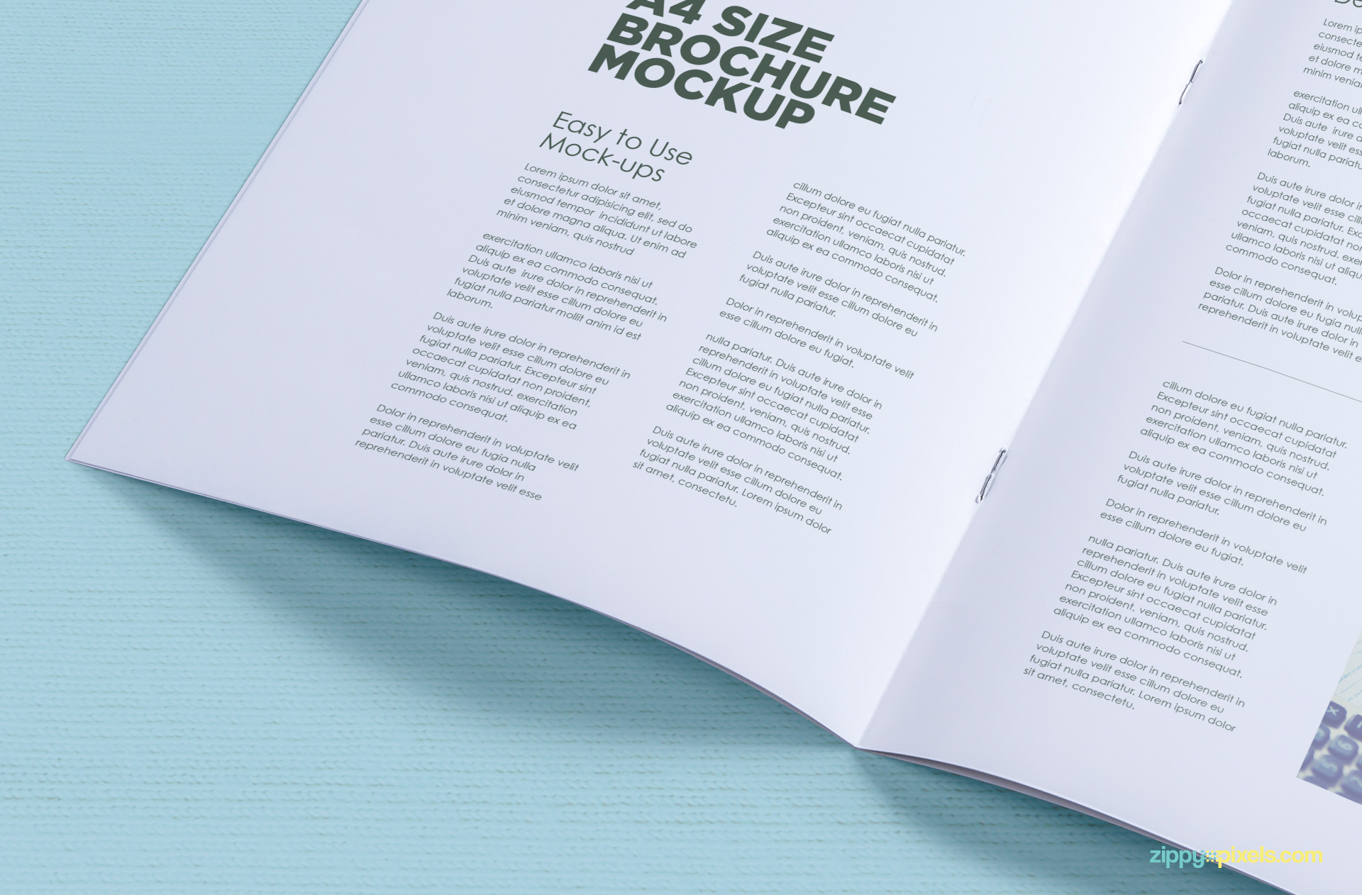 08-free-corporate-a4-brochure-mock-ups-824x542