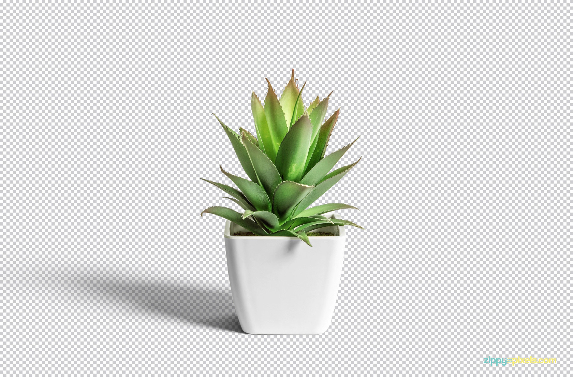 Use Adobe Photoshop for editing this white pot mockup PSD.