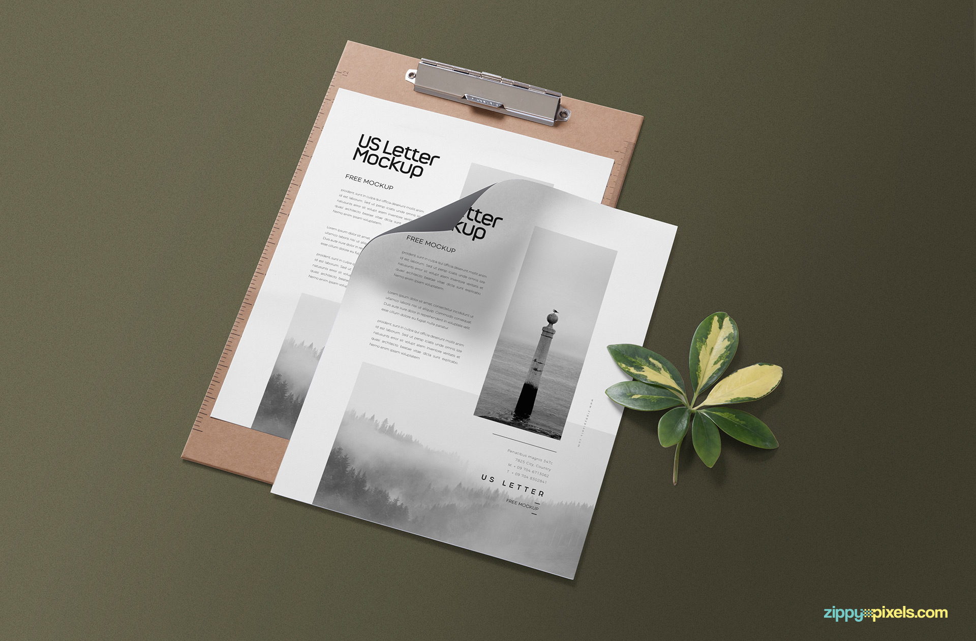 Free US letter mockup for the presentation of your stationery designs.