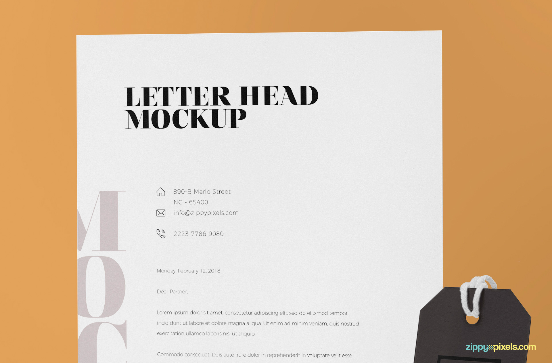 Standard A4 size letterhead to showcase your design.