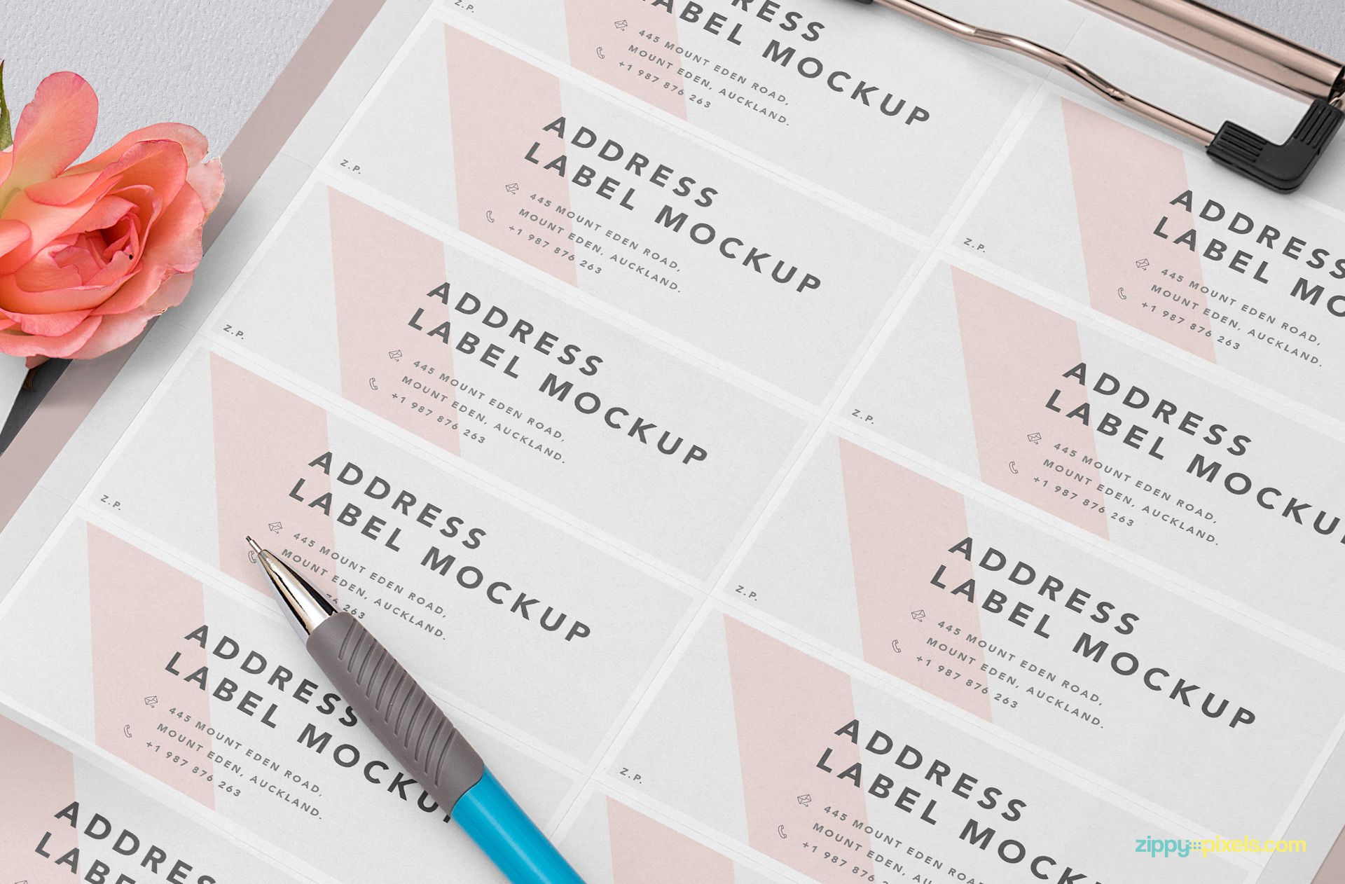 Free address label sheets with multiple labels.