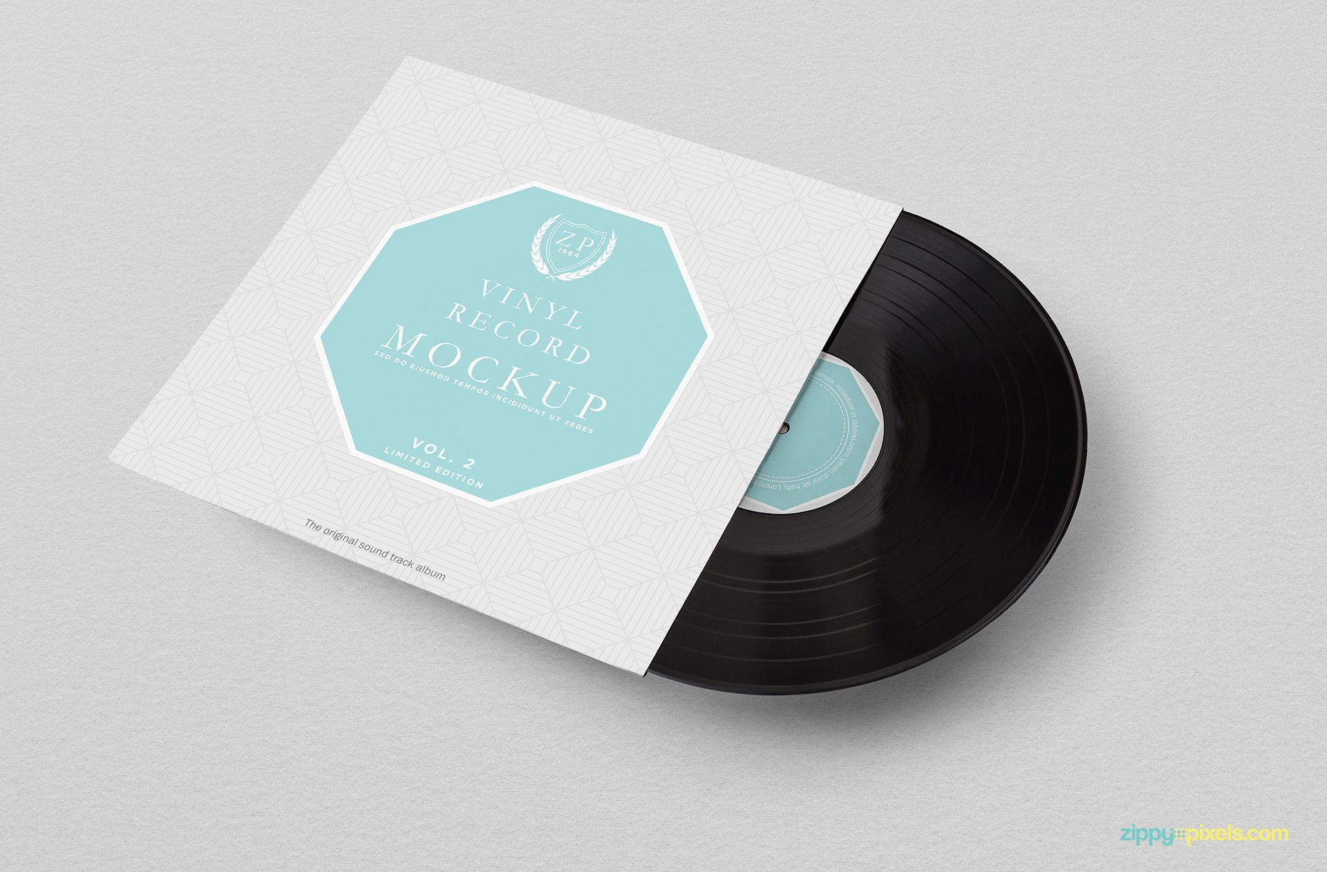 Attractive record mockup for your presentation needs.